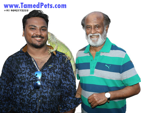 Vijay.AR of TamedPets.Com with Superstar Mr.Rajinikanth after KABALI movie shoot.